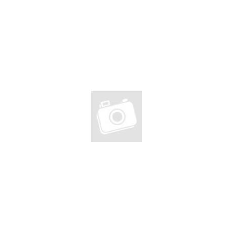 Száraz Fokhagyma termés falfestett narancssárga